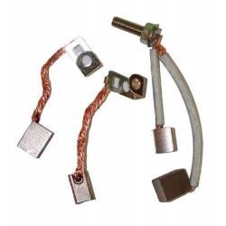 Kit jeu de charbons 490311 pour démarreurs BRIGGS & STRATTON munis d'une goupille d'arret pour le pignon