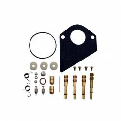 Kit de réparation carburateur BRIGGS ET STRATTON 495799 - 497535 - 494880 - 494384