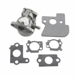 Carburateur BRIGGS et STRATTON 790120 - 694202 - 693909 - 499974 modèles INTEK OHV 6 cv
