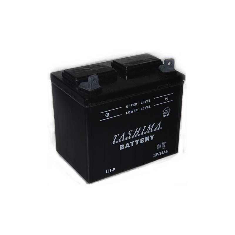 Batterie u1l9 pour tracteur tondeuse autoport e for Batterie pour autoportee mtd
