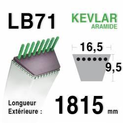 Courroie motoculture trapézoïdale 16.5mm x 1815mm ext. (LB71)